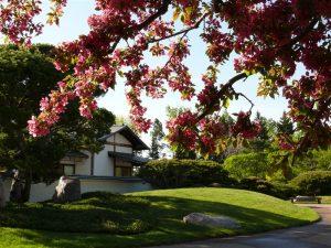 Nikka Yuko Japanese Garden Photo