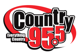 country95-logo